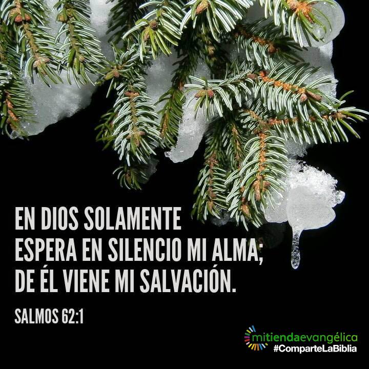 versiculo-biblia-salmo-62