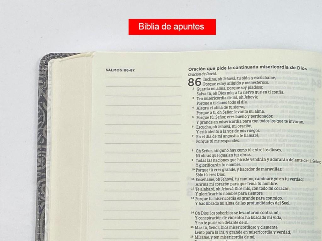 Biblia-apuntes