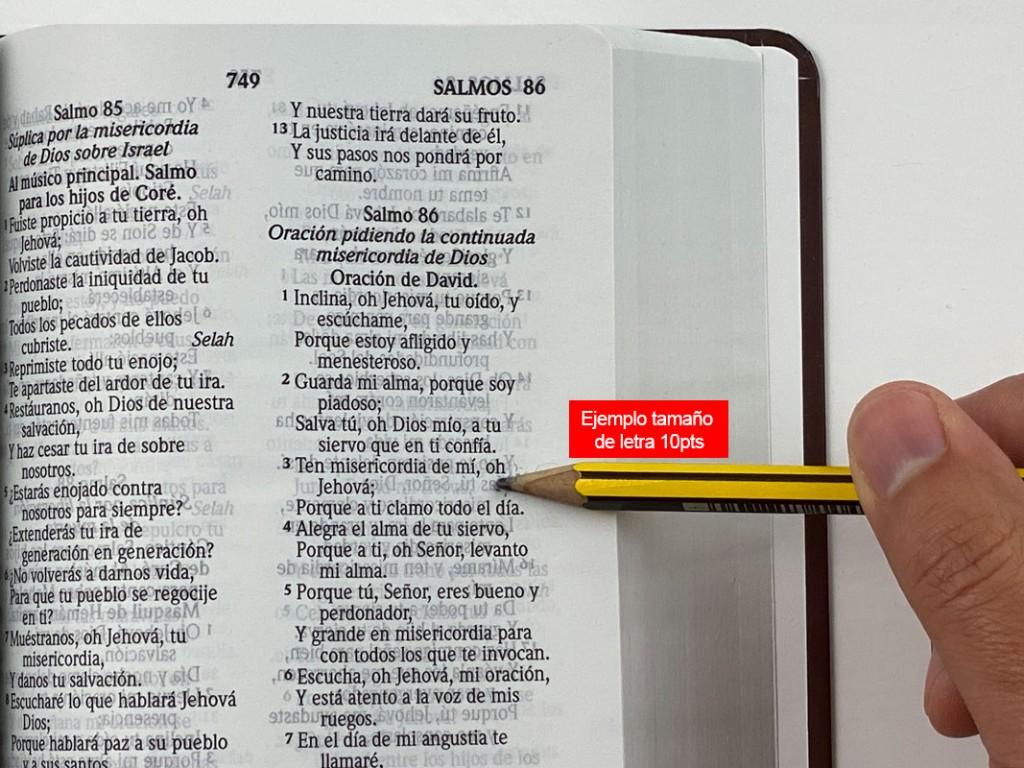 biblia-letra-10pts-2