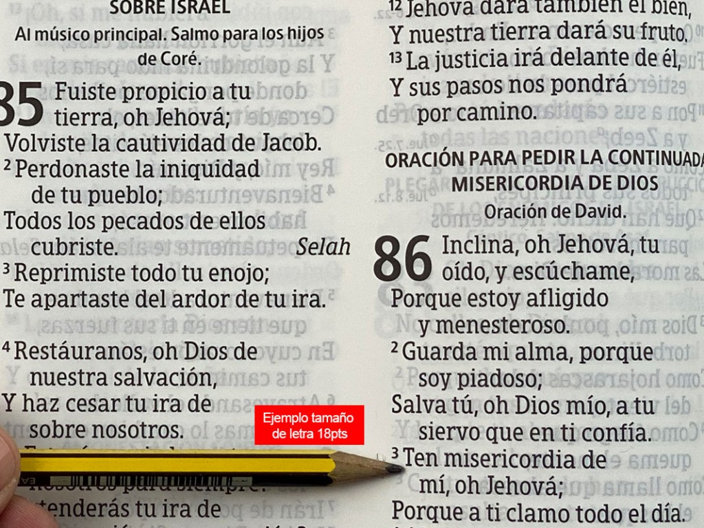 biblia-letra-18pt