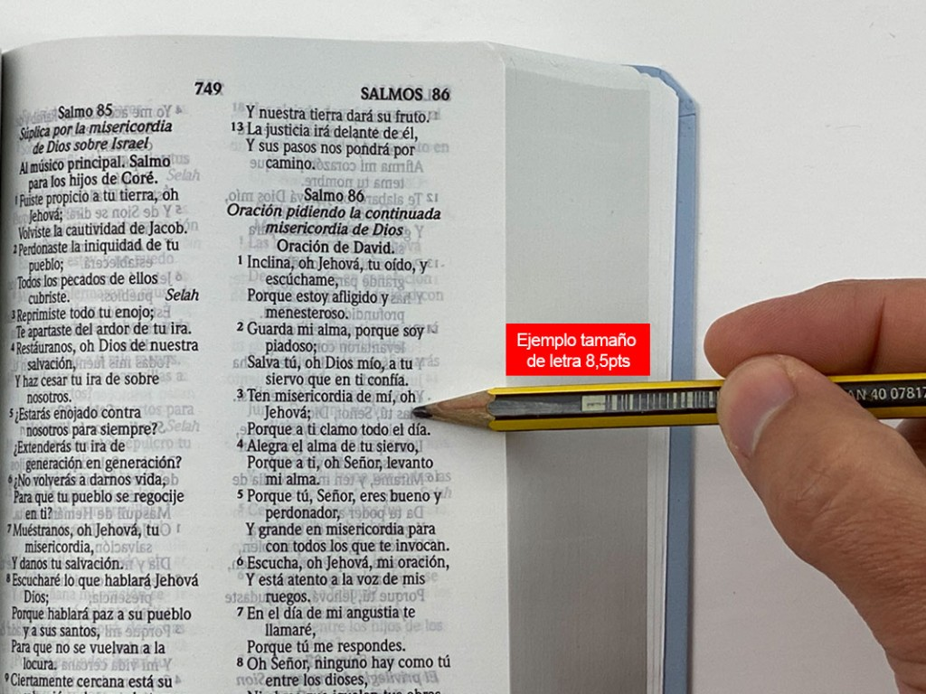 biblia-letra-8-5pts-2